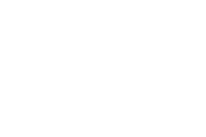 Argon & Co